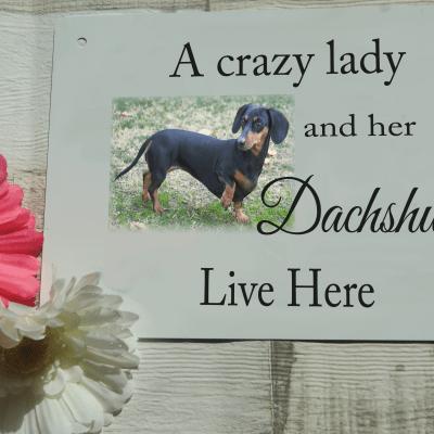 Personalised pet door sign