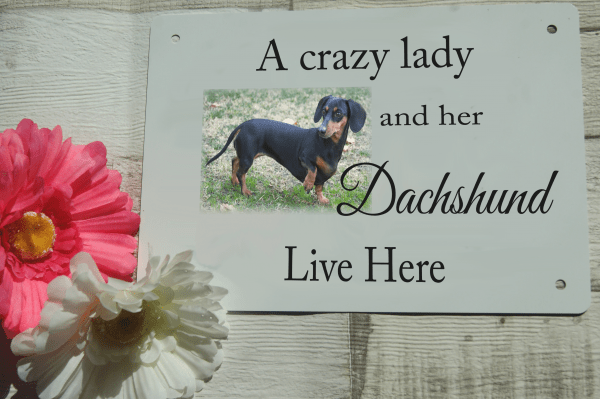 Personalised pet door sign