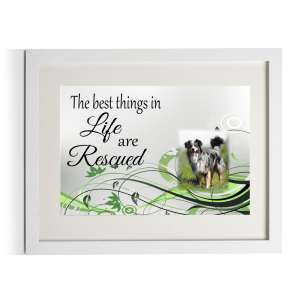Personalised The Best Things In Life Are Rescued Design