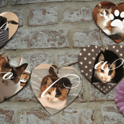 Personalised pet wooden bunting