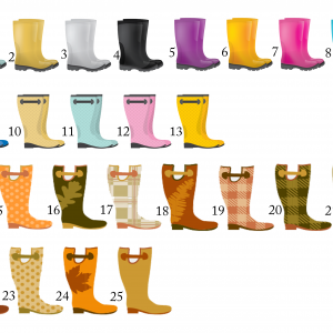 Welly Boot Choices
