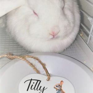 Personalised Pet Heart Ornament