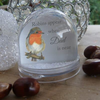 Personalised Robins Appear Snow Globe