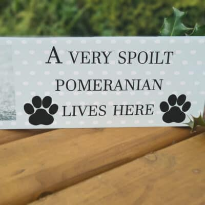 Personalised A Very Spoilt Dog Lives Here Acrylic Mantel Block