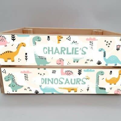 Personalised Dinosaur Design 1 Crate