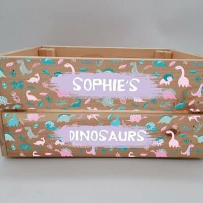 Personalised Dinosaur Design 4 Crate